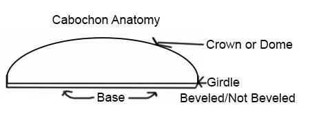 cab-anatomy